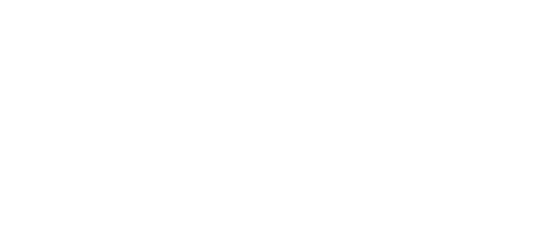 Referenz - ZF - BVS Industrie-Elektronik